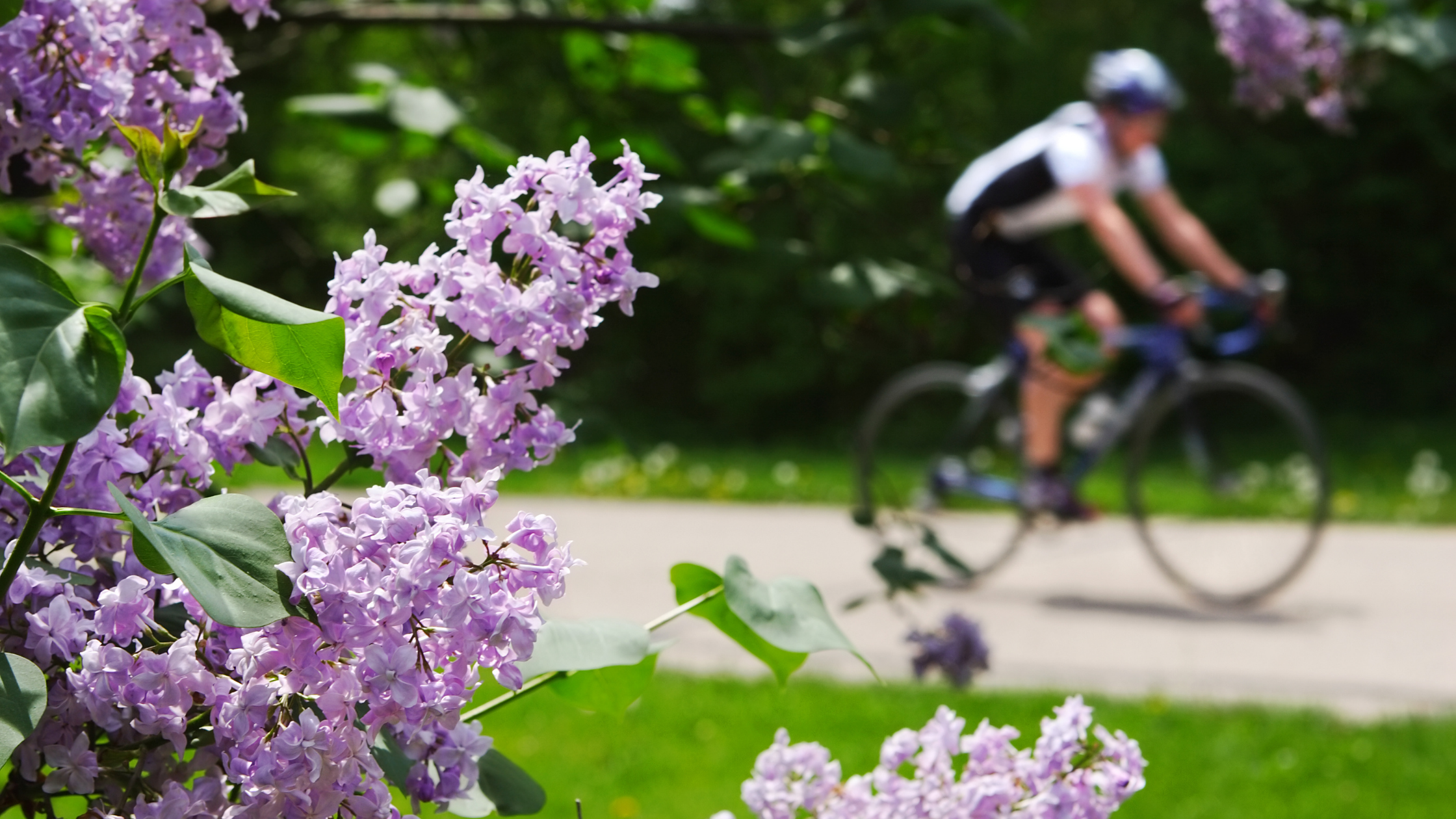 3 Activities to Get You Moving this Spring